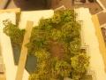 Embassy gardens 7