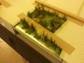 Embassy gardens 10