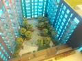 Embassy gardens 29