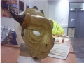 Mask side view