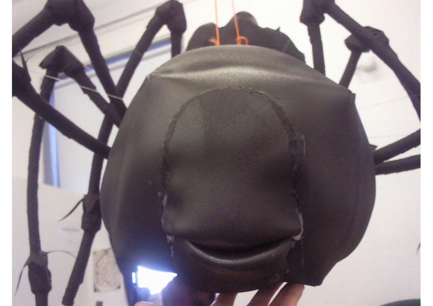 Module 4 year 2 spider 10